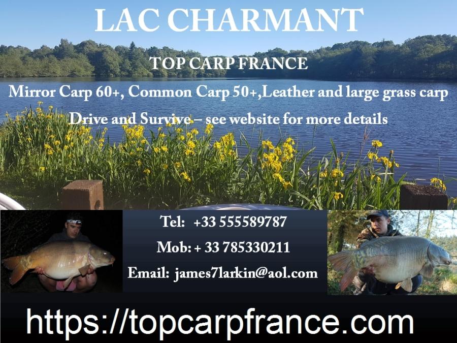 http://topcarpfrance.com